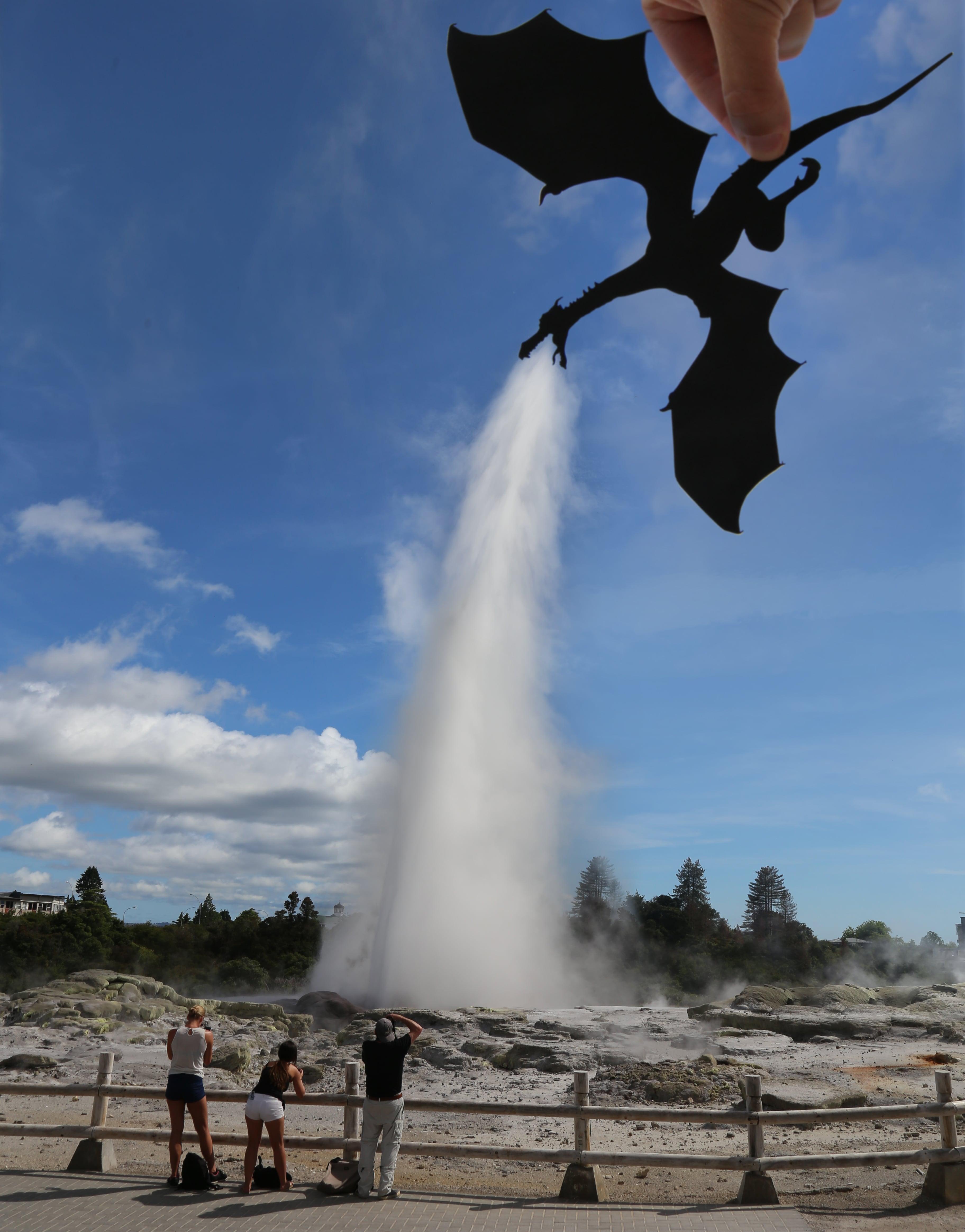 Rotorua Dragon