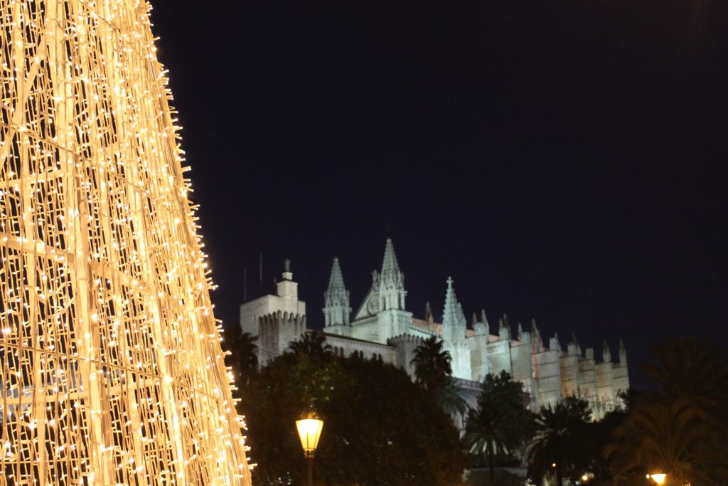 Palma cathedral at night illuminated by light